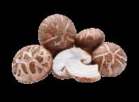 legumes - champignons-shiitake.png