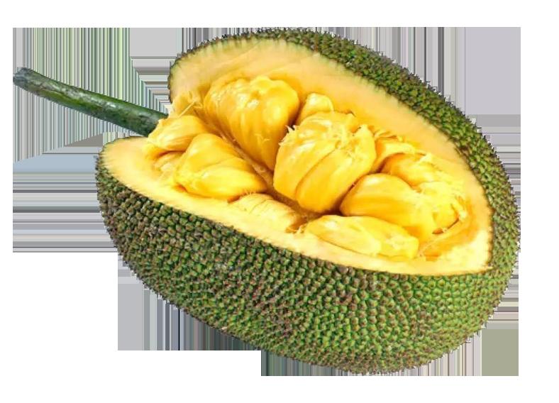 produits - fruits - fruit-du-jacquier-jaquier