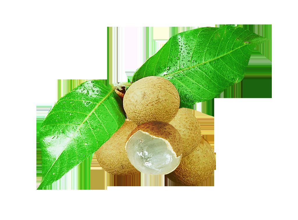 produits - fruits - longane