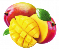 produits - fruits - mangue