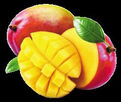 produits - fruits - mangue